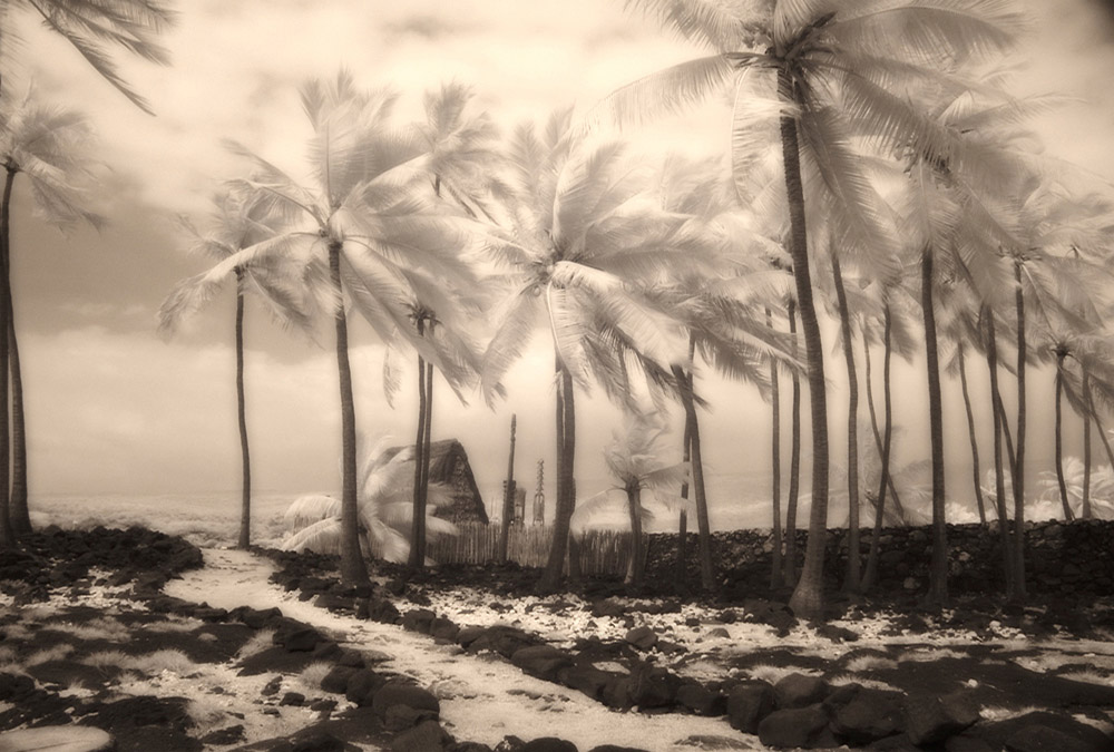 Place of Refuge, b&w infrared