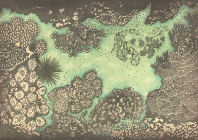AndreaPro Coral garden pp.tif 10-1
