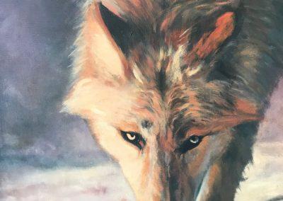Linda Satchell wolf 2019