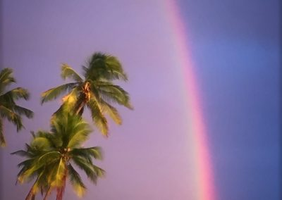 Kathleen T. Carr - Rainbow at Honaunau 2019