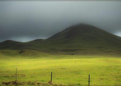 Hills, Waimea 8275adj